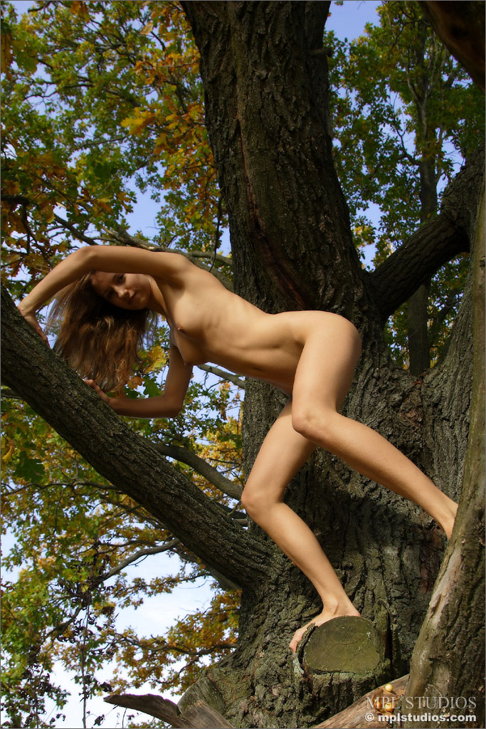 Mosterotic Fine Art Nude Metgirls